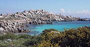 Réserve naturelle de Corse