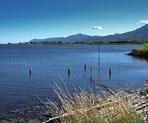 Réserve naturelle de l'étang de Biguglia