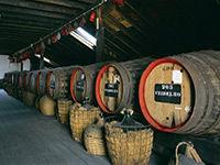 Les cuves de vin de Madère