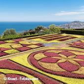Vacances Madère - Jardin de Funchal