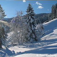 Guide touristique Autriche - paysage enneigé