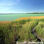 Voyage en Hongrie - lac balaton