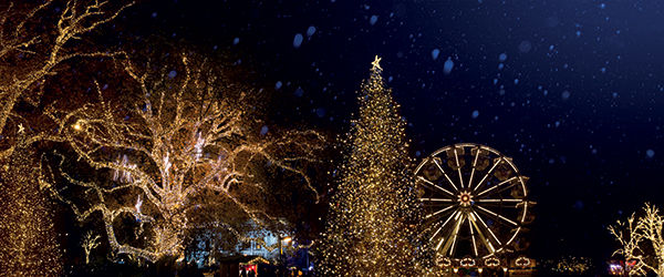 Illuminations de Vienne