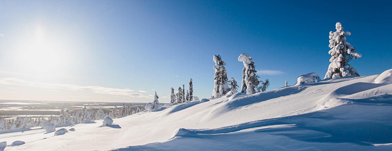 Paysage en Laponie